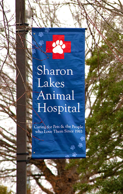 Sharon Lakes Animal Hospital